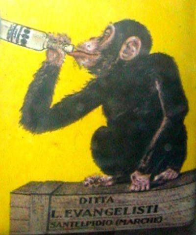 opice a droga