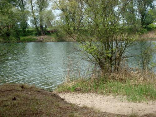 Duben u rybníka