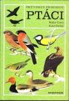 ptaci-164215
