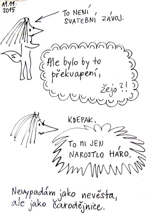 hol1-500