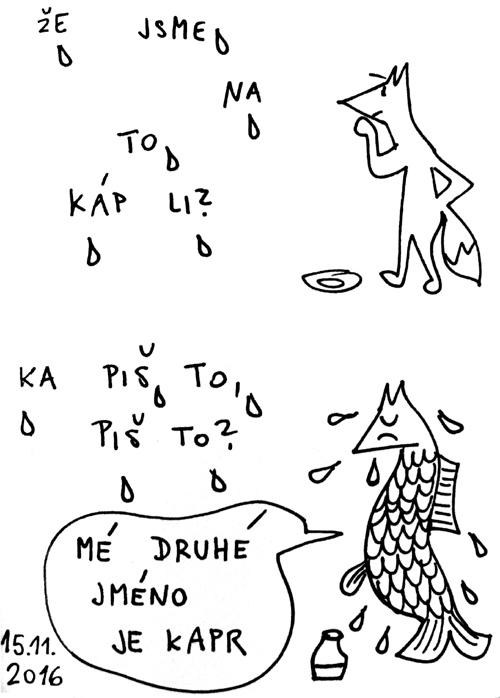 kap11-500