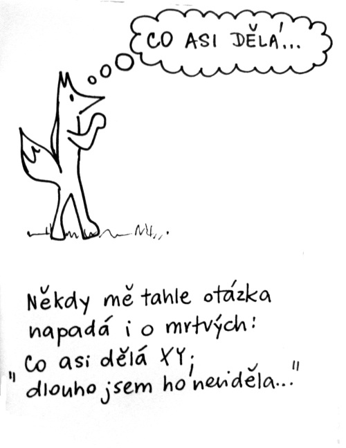lisky1-500