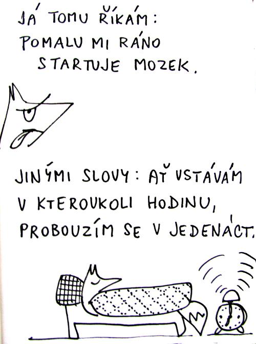 kur03