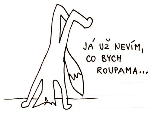 05-03-roupy1
