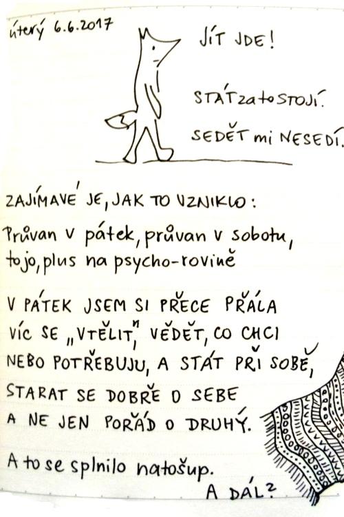 06-06-006