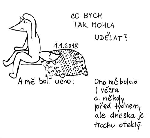 1-1-ucho1
