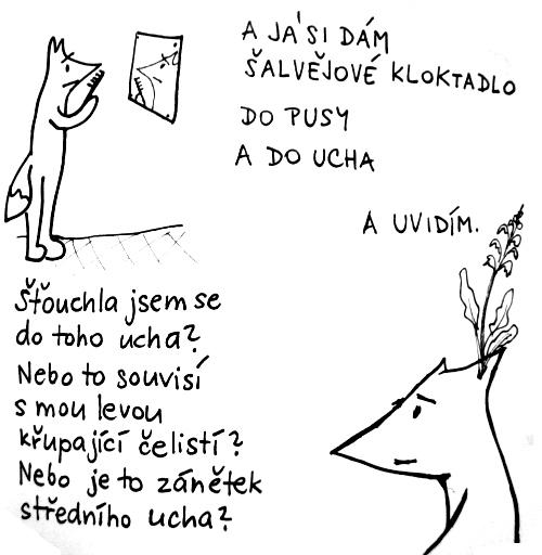 1-1-ucho2