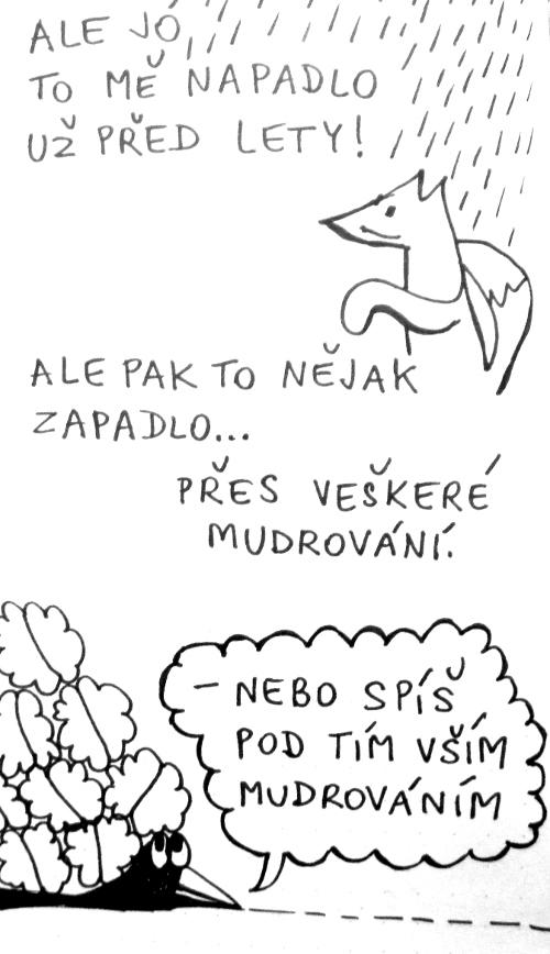 prok10