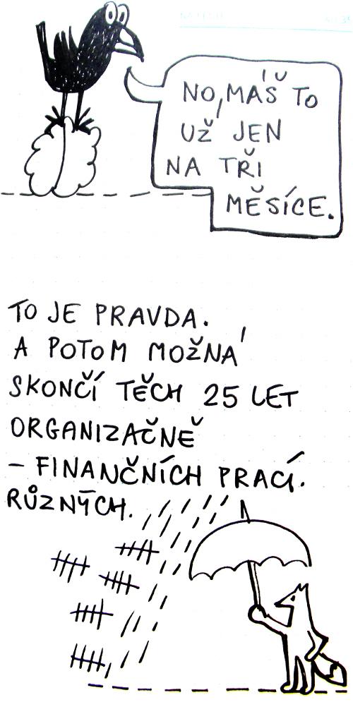 prok11