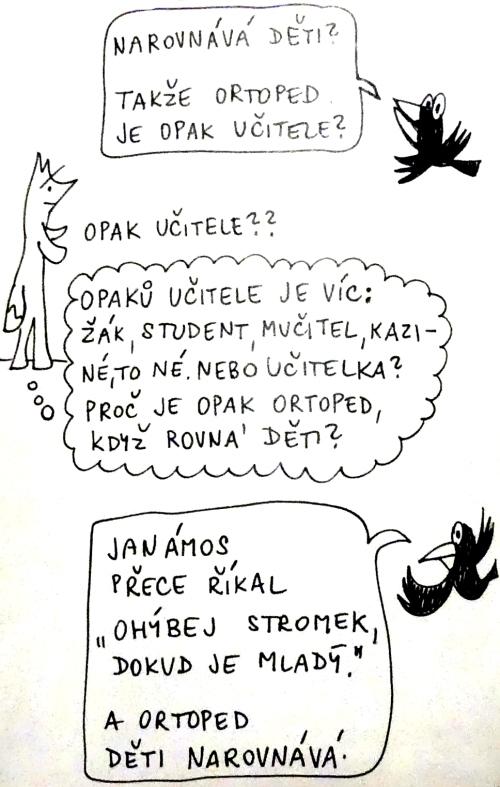 bor03