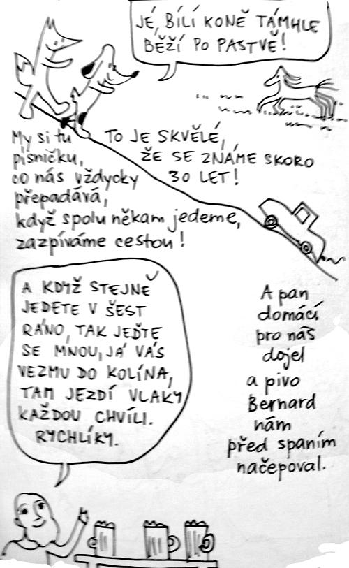 mydl6