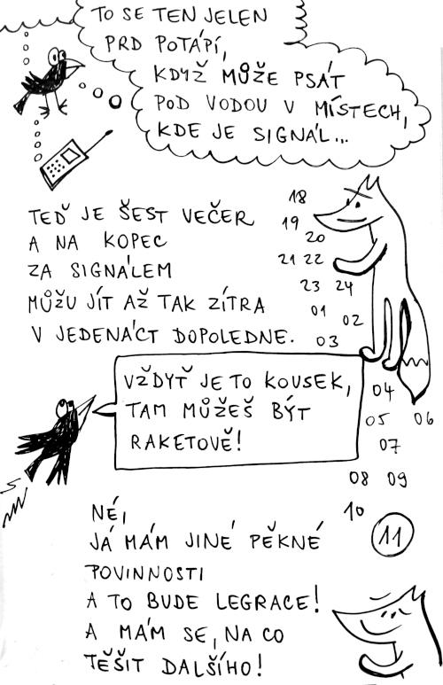 sig11